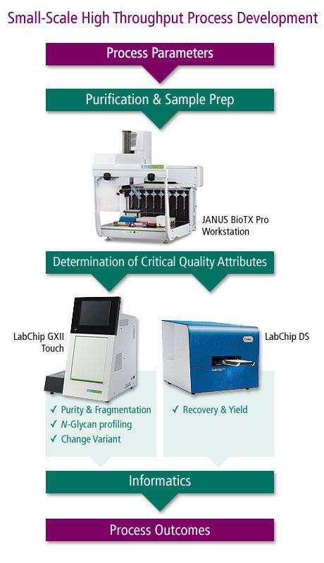 LabChip-GXII-process-(PKI-LST)